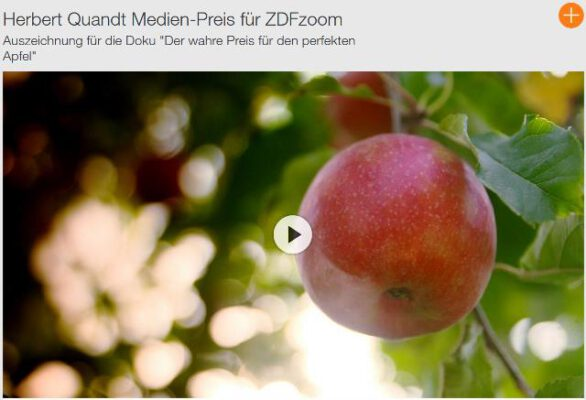 ZDF-Zoom-Reportage